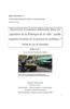 Mémoire_Amélie_Pollet.pdf - application/pdf